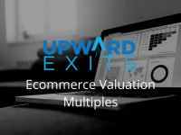 Ecommerce Valuation Multiples