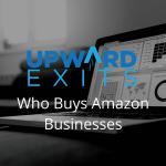 Who Buys Amazon Businesses
